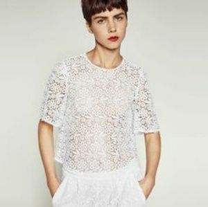 Zara cropped lace top